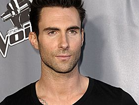 Adam Levine Slams 'American Idol' For 'Masking' Gays