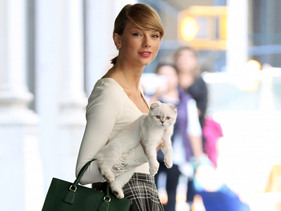 Taylor Swift's Cats Are Cute, But They Have One Seriously Annoying Habit